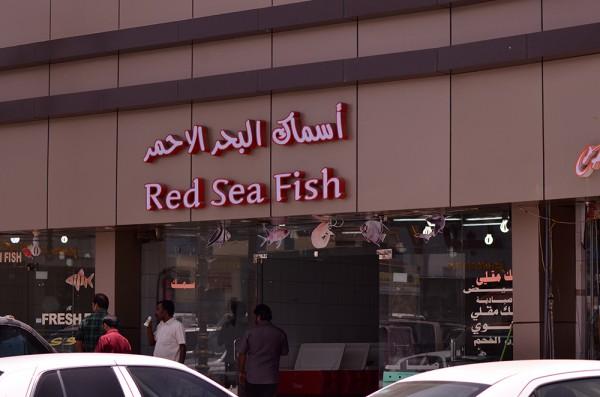 أسماك البحر الأحمر - أسماك البحر الأحمر,