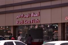 أسماك البحر الأحمر
