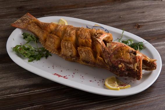 الناجل المقلى - مطعم أسماك القلزم,