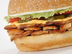 Chicken Shawurger دجاج شاورغر