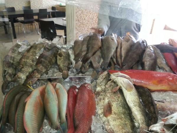 IMG-20130121-WA0002.jpg - مطعم الشفق للمأكولات البحرية,