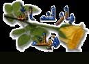 الصورة الشخصية للعضو الفارس الاسود