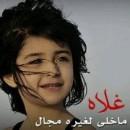 الصورة الشخصية للعضو Ndem Al Jrh