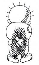 الصورة الشخصية للعضو ثائر زيدان