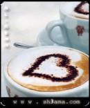 الصورة الشخصية للعضو عاشق القهوه